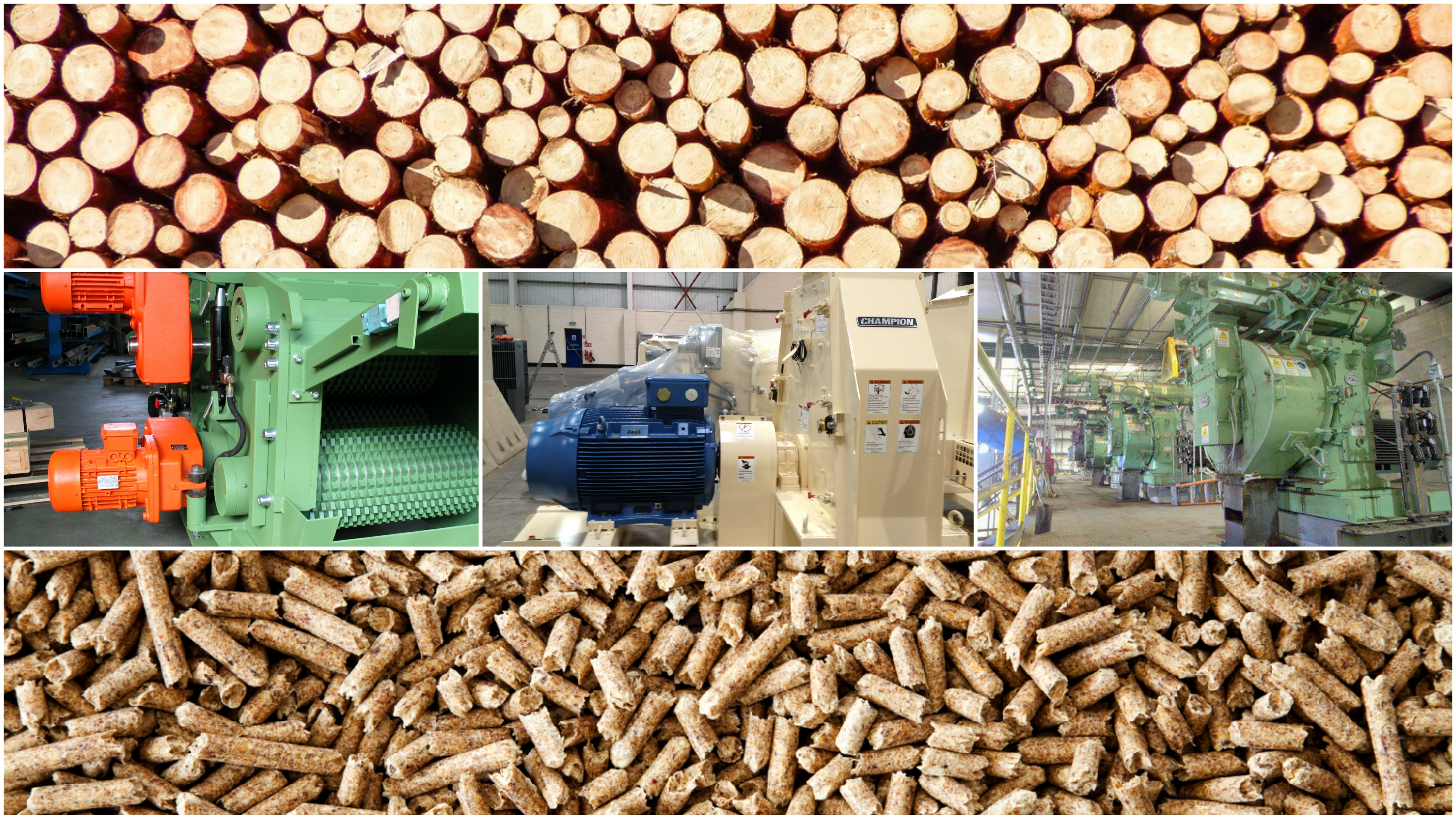 Wood Pelleting Plant for Pine Wood and all kind of imported hard wood