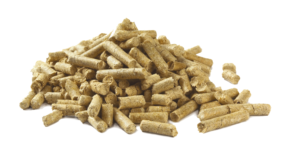 faq-pellet-production-plant
