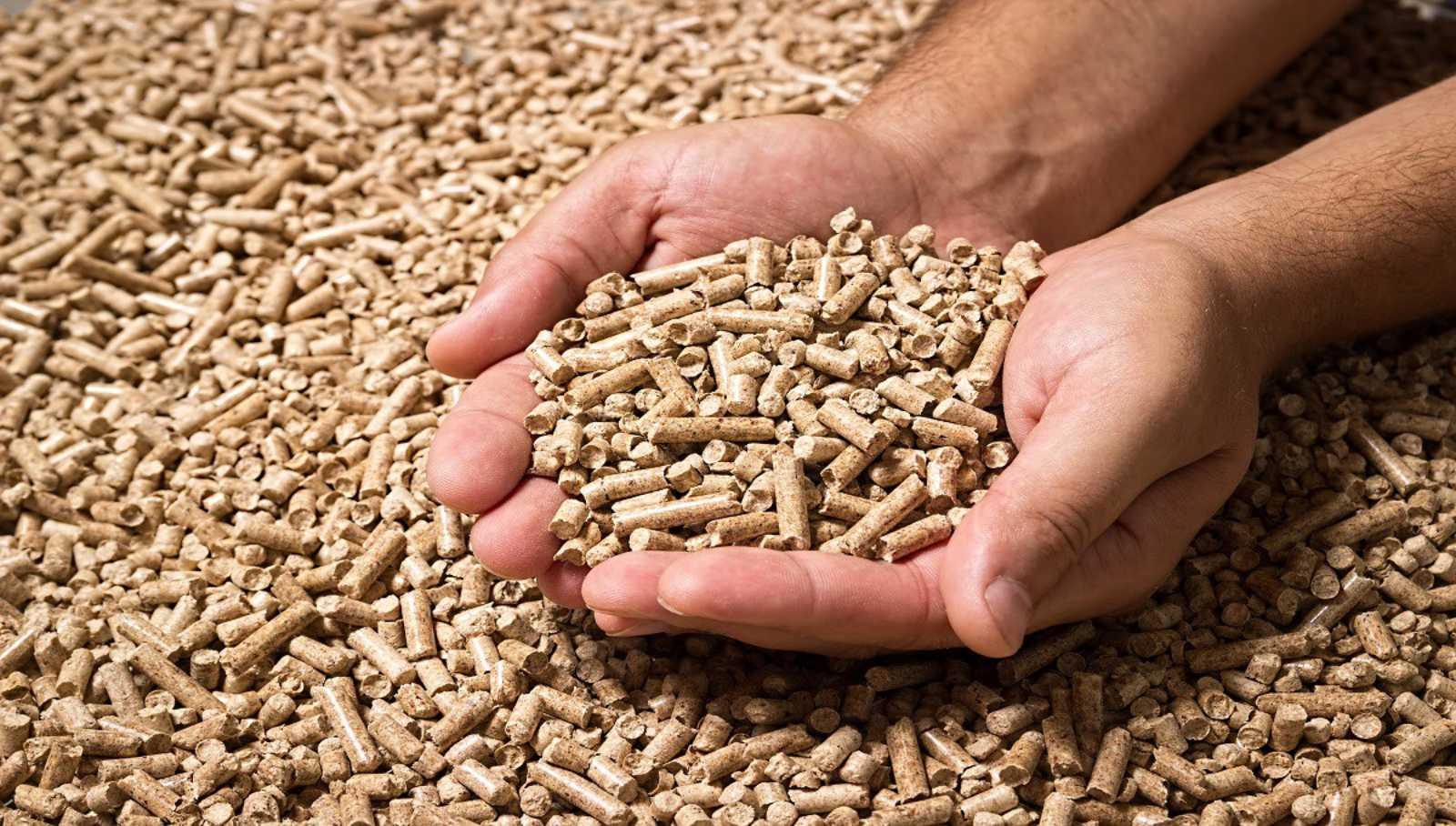 Wood Biomass Pellet Making Plant Machinery