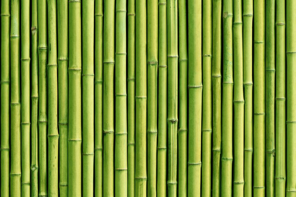 MOBILE PELLET MILL PLANTS - SERVODAY GROUP